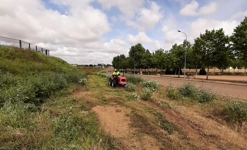 Parques y Jardines procederá a desbrozar la zona de San Marcos